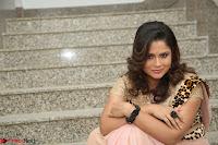 Shilpa Chakravarthy in Lovely Designer Pink Saree with Cat Print Pallu 044.JPG