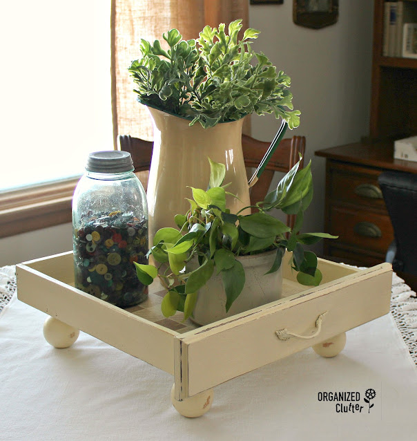 Photo of a drawer staged as a houseplant tray