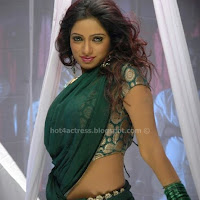 Actress udaya bhanu hot saree