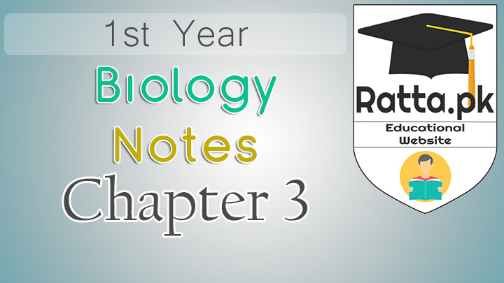 1st Year Biology Notes Chapter 3 Enzymes - 11th Class Bio Notes pdf
