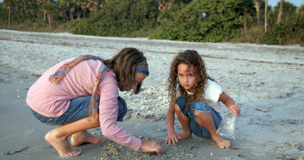Even to the child also enjoy finding shark teeth in Venice shore
