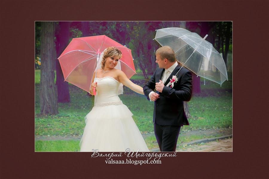Чернигов,свадьба, фото,фотограф