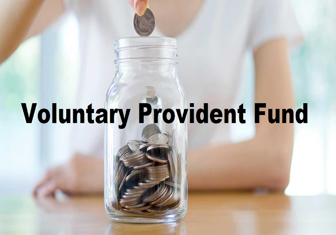 Voluntary Provident Fund (VPF)  Everything you need to know