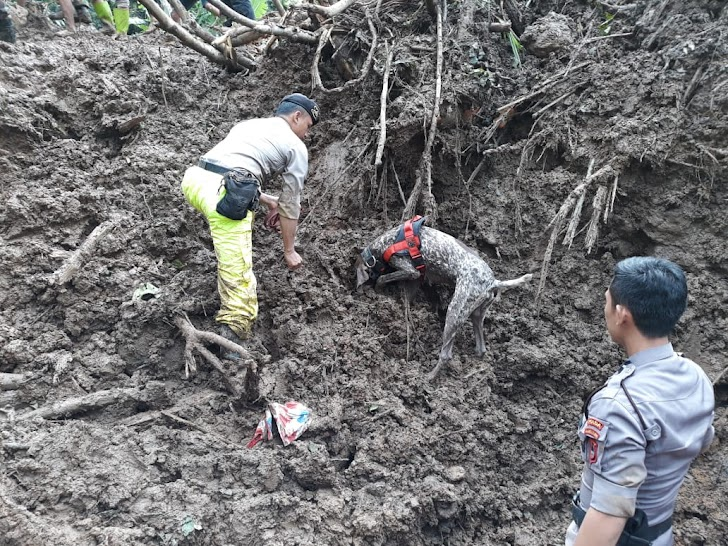 K-9 Polda Sulsel Temukan 7 Jenazah Korban Bencana Alam Longsor di Gowa