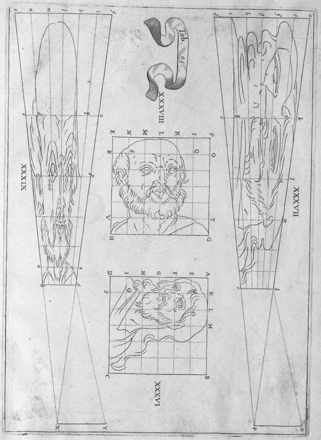 geometrical line drawing guides for anamorphic projection portrait of human male head