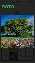 460 слов 4 наступило лето, расцвели цветы и деревья зеленеют 12 уровень