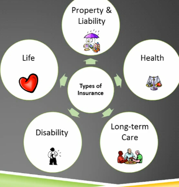 Types of Insurance in United States  2019