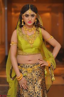 Sony Charishta in Green Choli Ghagra Transparent Chunni Ethnic Wear March 2017 040.JPG