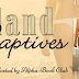 Blog Tour - Island Captives by Fossbrook & Cole