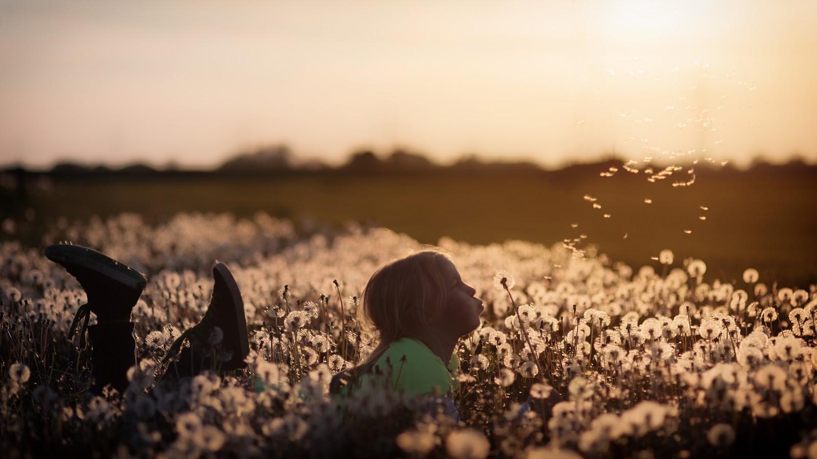 野原に寝そべって蒲公英の綿毛を吹いている子供