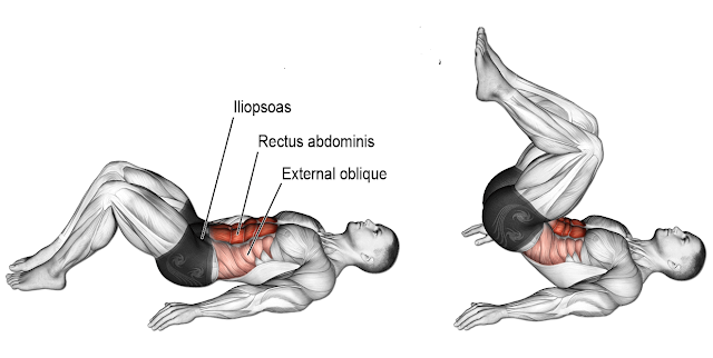 Reverse Crunch: One of the Best Abdominal Exercises   Full guide
