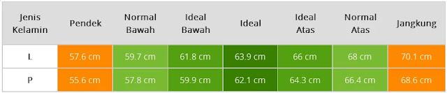 Tabel Tinggi Badan Bayi Usia Empat Bulan
