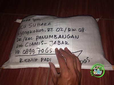 Benih Padi TRISAKTI Pesanan    UCU SUHARA Ciamis, Jabar  (Sesudah di Packing)