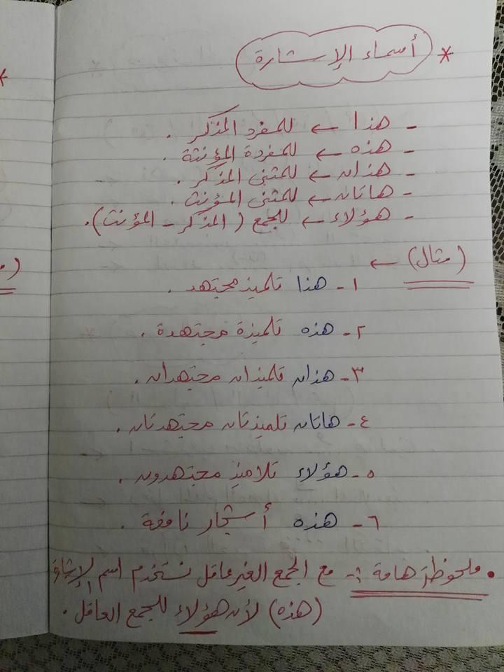 مراجعة القواعد النحوية والتراكيب للصف الثاني والثالث الابتدائي مستر إسلام سمك 5