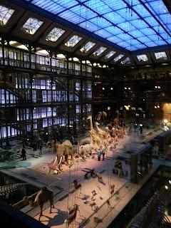 galleia dell'evoluzione, Parigi