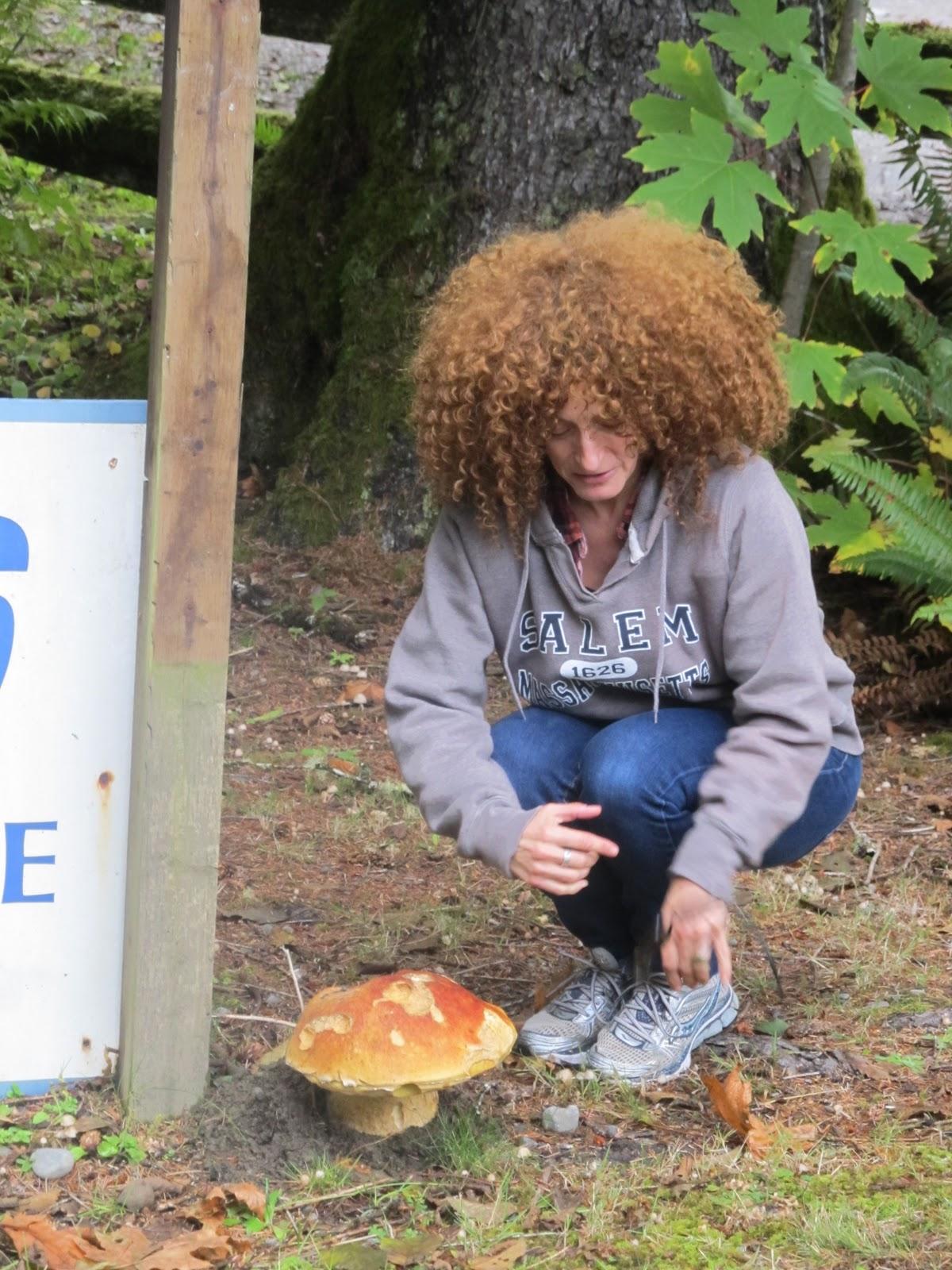 Biggest mushroom head