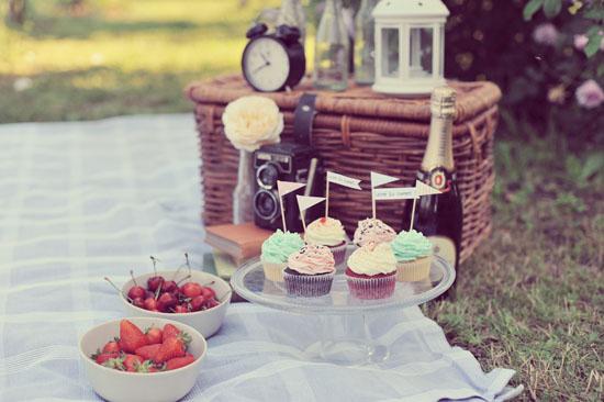 picnic vintage engagement