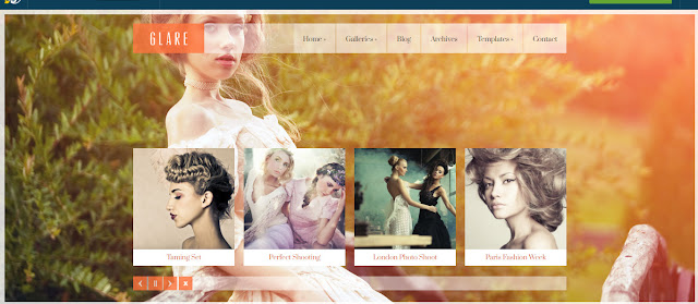 Glare- Perfect Wordpress Photography Theme