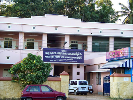 Kerala State Poultry Development Corporation Limited
