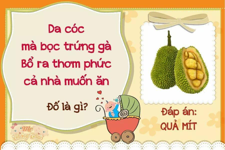Trên là gần 1350 câu đố dân gian Việt Nam với nhiều chủ đề khác nhau .Bao  quát các vấn đề mà nhiều người quan tâm .