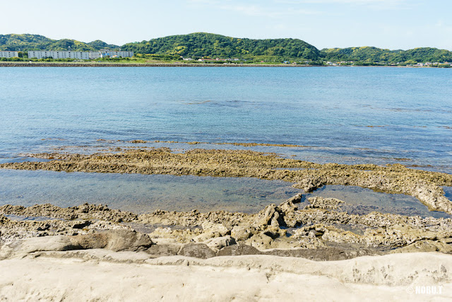 沖ノ島(館山市)の宇賀明神・鳥居前の海