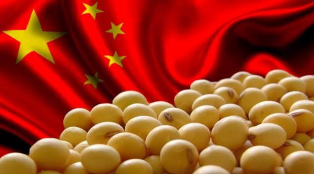 DECLARAÇÃO DE CHANCELER SOBRE CHINA GERA MAL-ESTAR COM O AGRONEGÓCIO