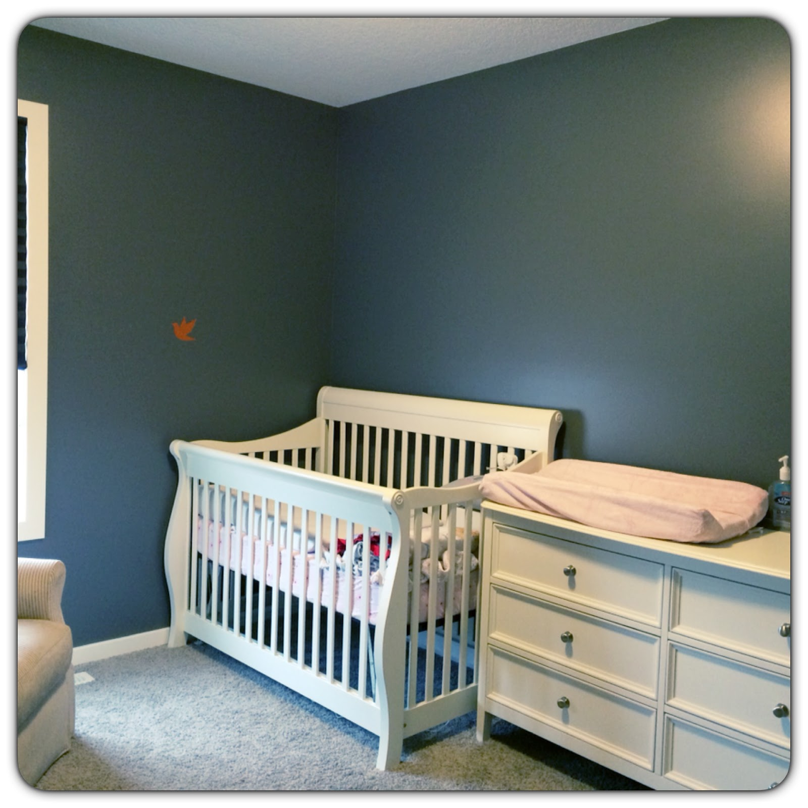Review Behr Marquee Paint