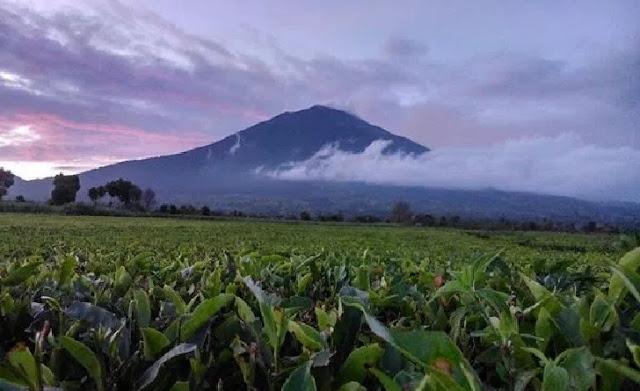 2. Gunung Kerinci - Jambi