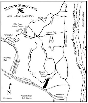 Effie Yeaw Nature Trails Map