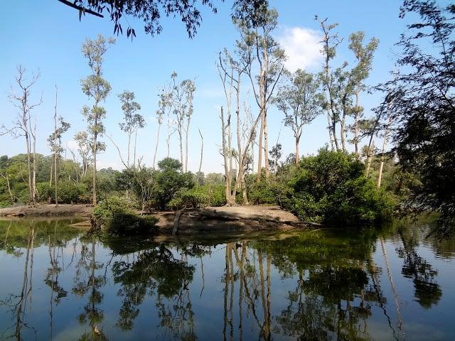 Parque Ecológico Tietê