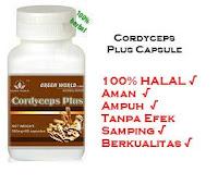 Obat Herbal Untuk Penyakit PPOK