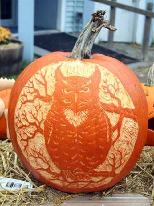 My Owl Barn Happy Halloween 5 Creative Owl Pumpkins