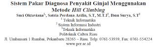 Sistem Pakar Diagnosa Penyakit Ginjal Menggunakan Metode Hill Climbing [PDF]