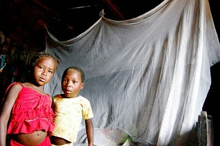 Mosquito Netting For Malaria Prevention