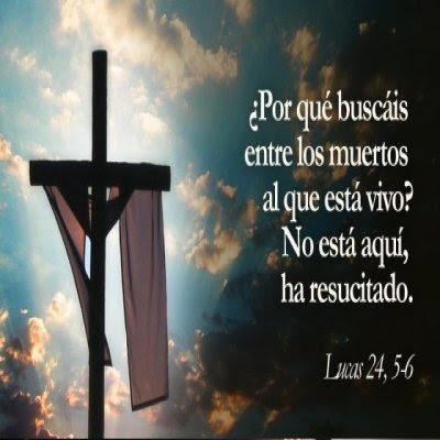 Imagenes Con Frases De La Biblia  Para El Domingo De Resurrección