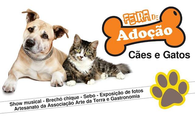 Música, brechó, sebo e arte na Feira de Adoção de  Cães e Gatos no Mercado Municipal no domingo 10/07