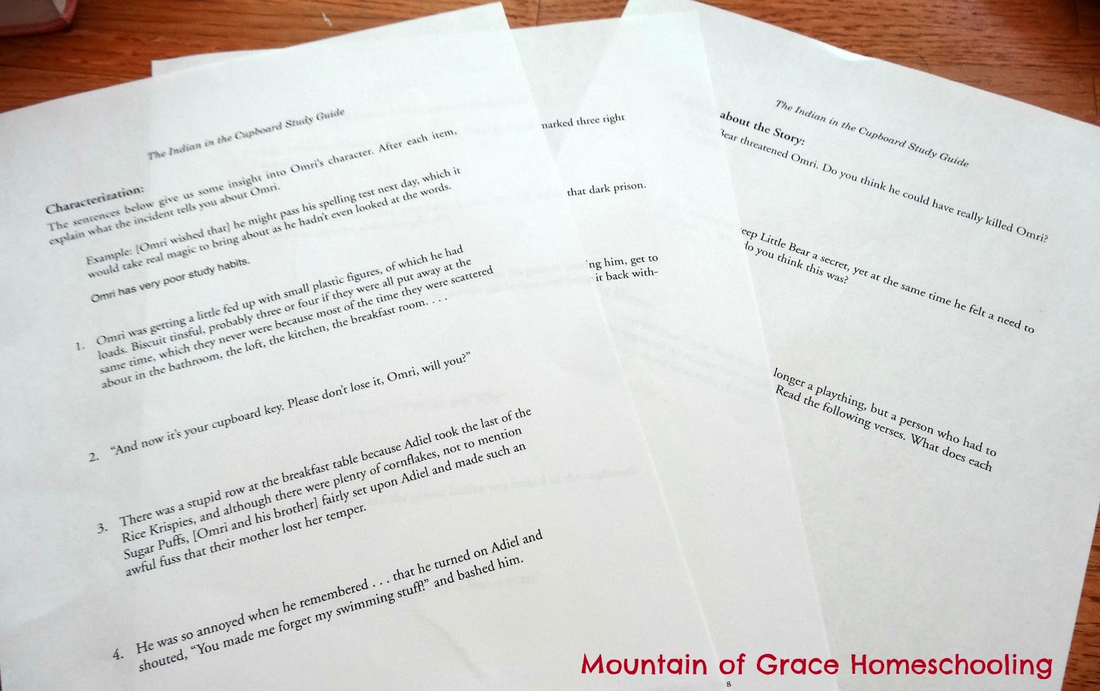Mountain of Grace Homeschooling: TOS Review~ Indian in the ...