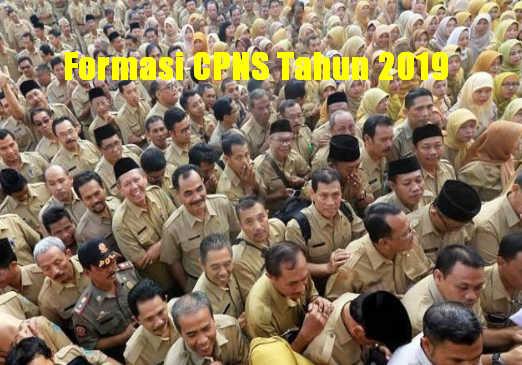 Formasi CPNS Tahun 2019