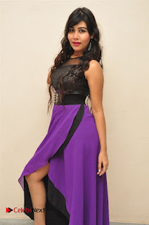 Telugu Actress Rachana Smith Stills at Money is Honey Audio Release  0027.jpg
