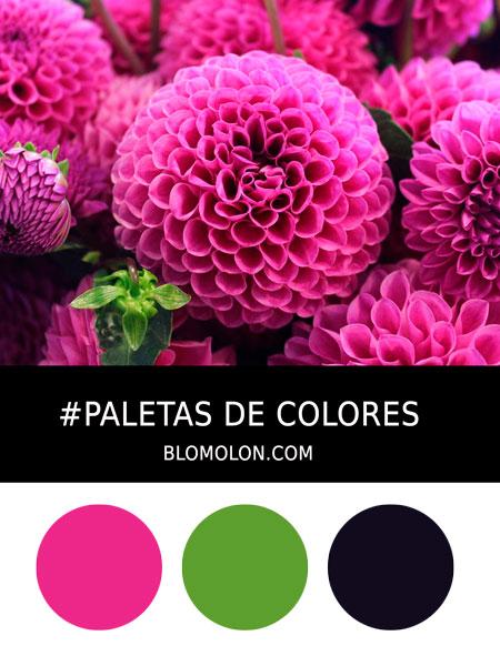 paletas_de_colores_mes_de_abril_3