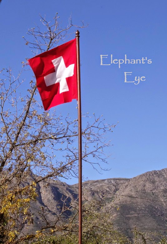 Swiss flag flying in our garden in 2010 when we still had the pecan tree