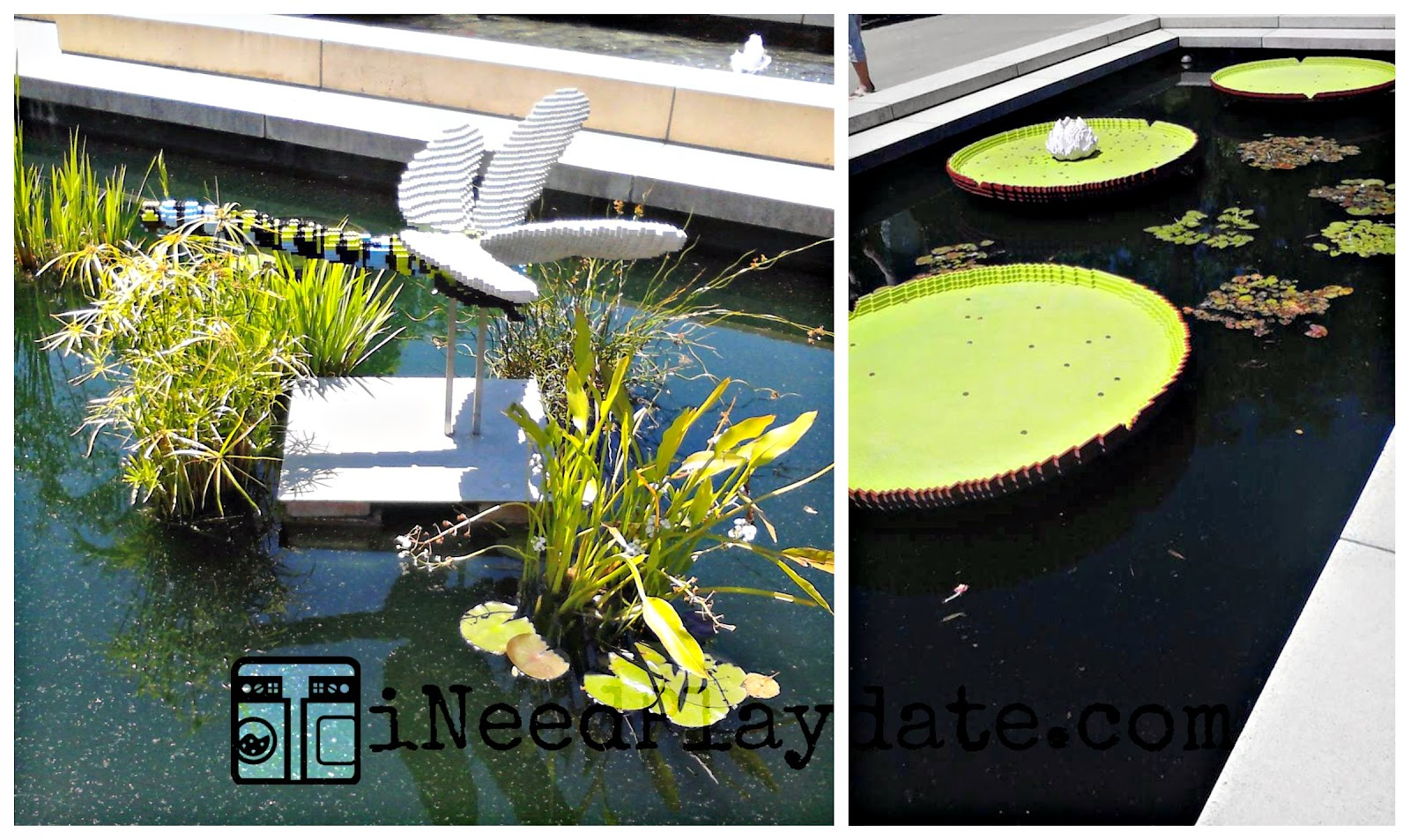 @CBGarden + LEGOS: Lilly pond and dragon flies
