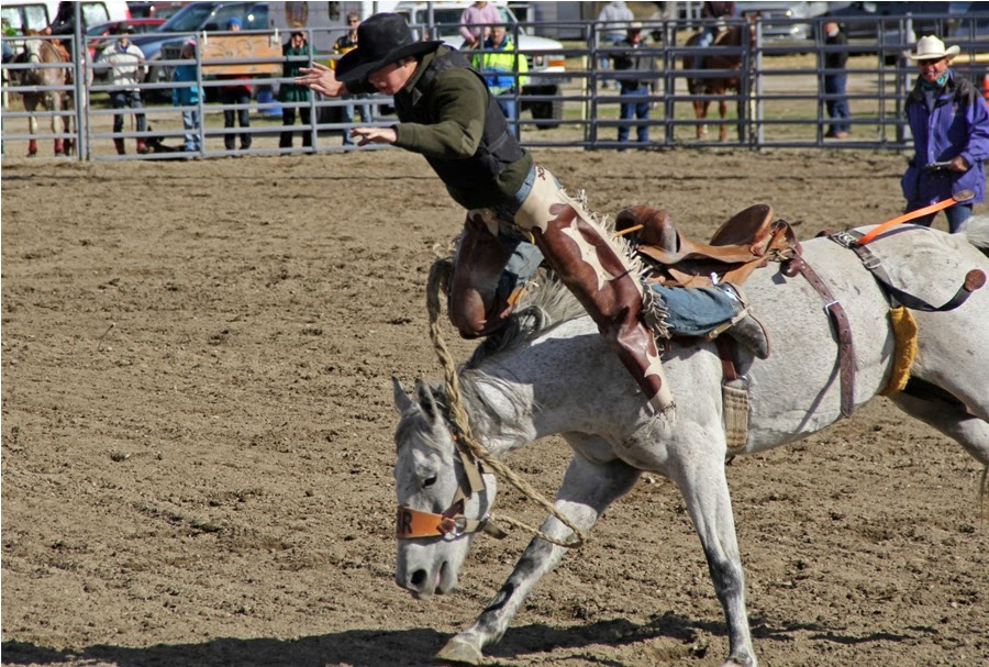 Pro Leisure Circuit Rodeo