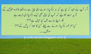 Urdu Lovely Quotes 42