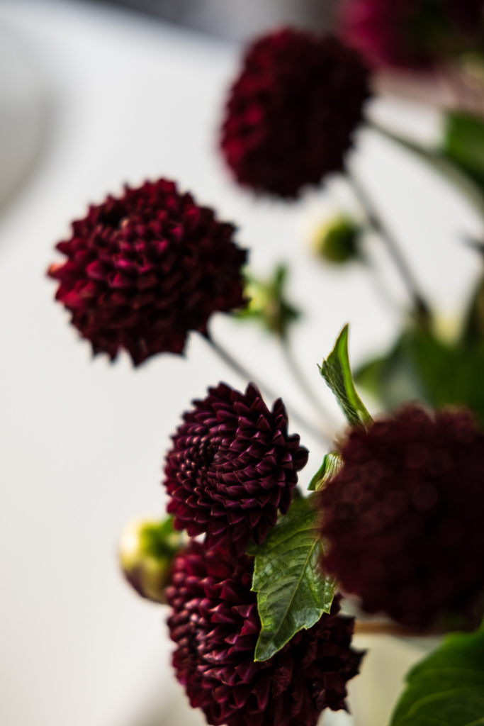 Blumendeko im Herbst mit dunkelroten Dahlien by fim.works Lifestyle Blog