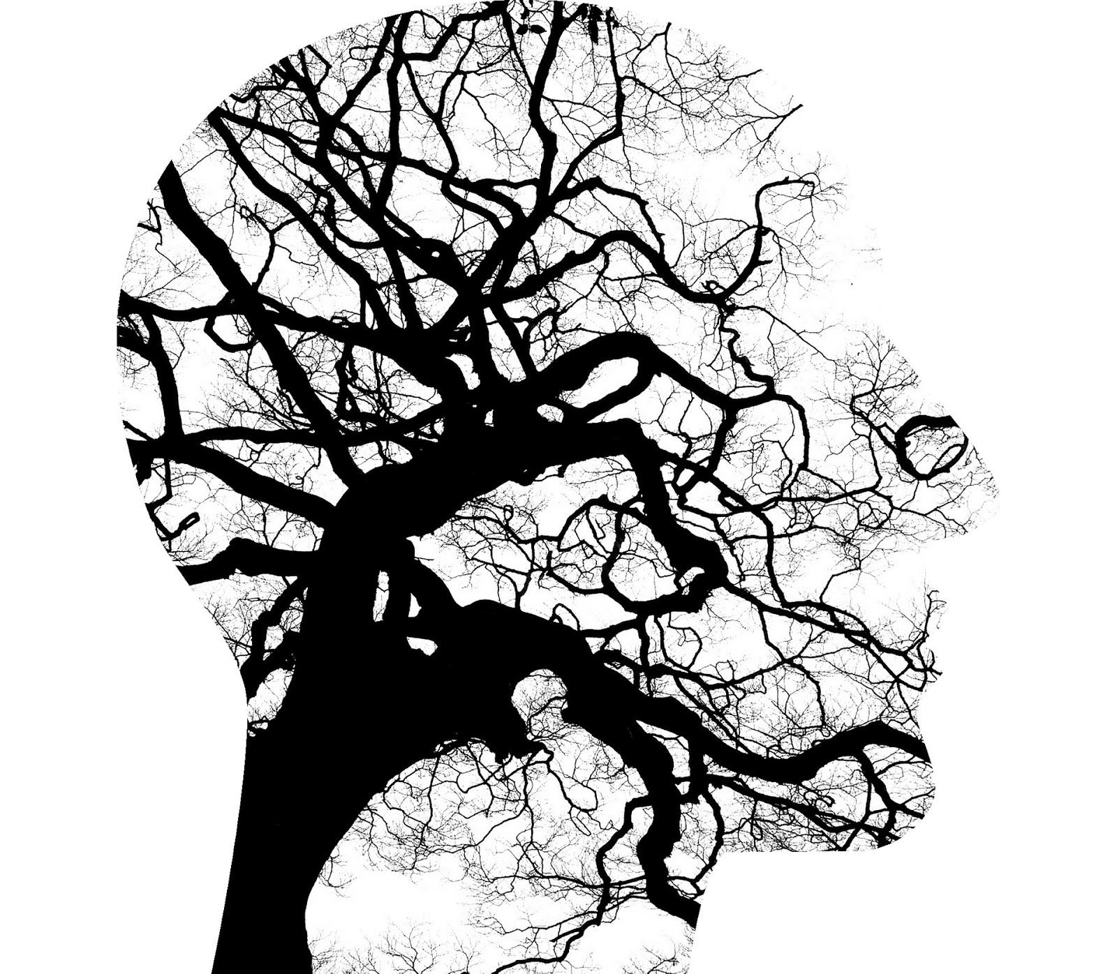 Manual práctico de psicoterapia Gestalt. (Libro)