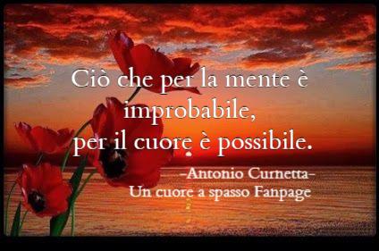 Un Cuore A Spasso Fanpage Antonio Curnetta Un Cuore A Spasso Fanpage