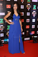 Bollywood Celebrities on the Red Carpet Of Zee Cine Awards 2017 Exclusive 079.JPG