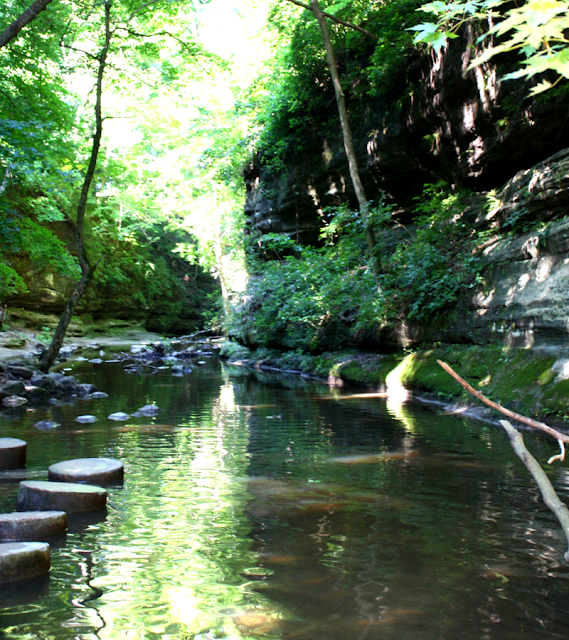Skipping stones at Matthiessen in the canyon to cross the stream