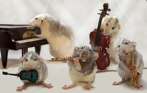 01-Jam-Session-Musical-Dumbo-Rat-Ellen-Van-Deelen-www-designstack-co